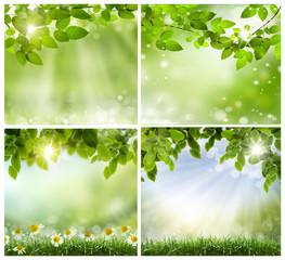 spring backgrounds