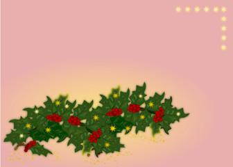 Agrifoglio sfondo rosa