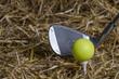 canvas print picture - Golfball Tee Schläger
