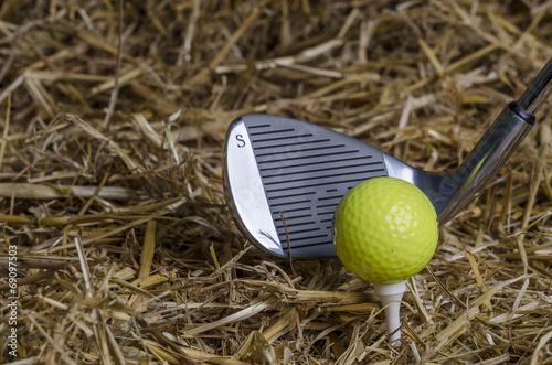 canvas print picture Golfball Tee Schläger