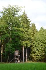 Baumhaus im Wald - Jägerstand