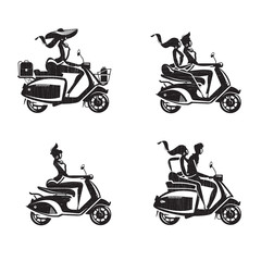 Scooter icons. Vector format