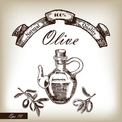 Olive oil in jar with tree branch hand drawn illustration