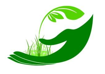 GreenHand2