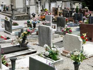 Cemetery Flower Graves