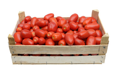 wooden crate full of tomatoes