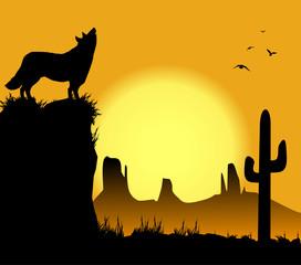 lupo nel deserto