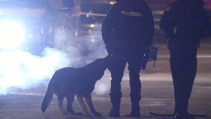K9 unit dog playing in leashe with police officer in silhouette