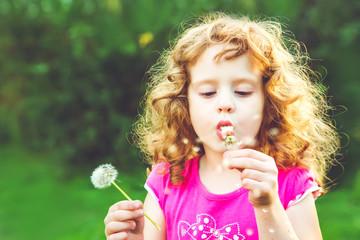 Beautiful little curly girl blowing dandelion, horizontal shot