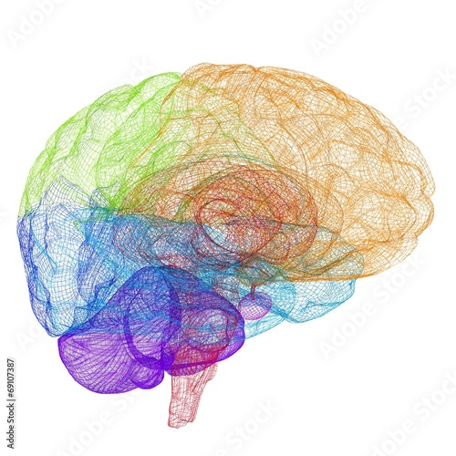 Creative concept of the human brain - 69107387