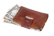 Постер, плакат: leather wallet with money