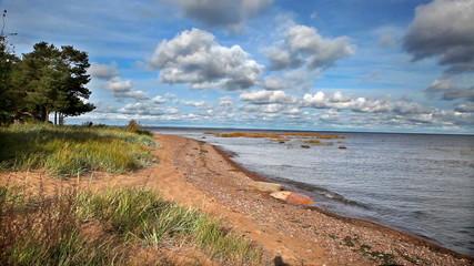 Russia. Autumn coast of the Gulf of FinlandStock video: