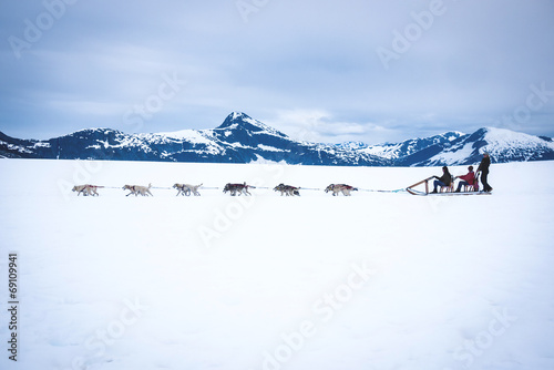 Tourists are pulled by a dog sled along the Norris Glacier in Al