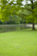 canvas print picture - Green park with little lake