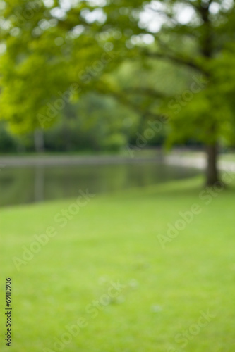 canvas print picture Green park with little lake