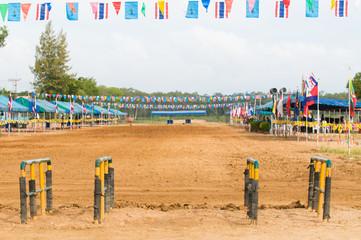 Buffalo race track in Thailand