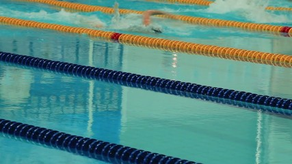 Sports competition swimming in the pool
