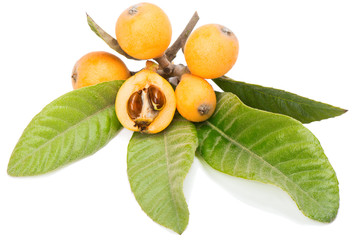 Close up view of some loquat fruits