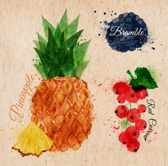Fruit watercolor pineapple, bramble, red currant kraft