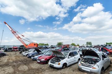 Row of crashed cars at a junkyard