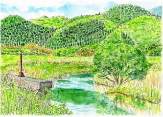 初夏の小川