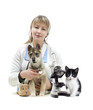 veterinarian and Pets