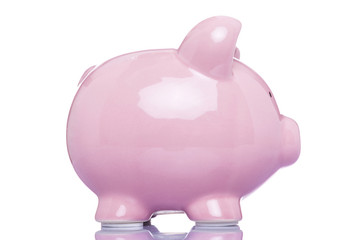 Profile view of a large piggy bank, isolated on white background