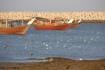 Traditional Omani fisherman boat