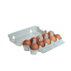 Ten brown eggs