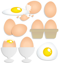 Set of eggs on white background