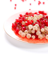 White and red currant