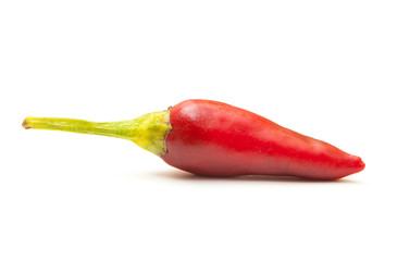 Red hot chili pepper made in Salento, Puglia, Italy