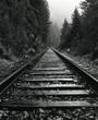 North Idaho Train Tracks - 69136990