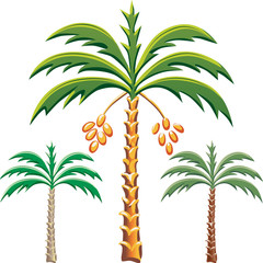 vector three date palm trees
