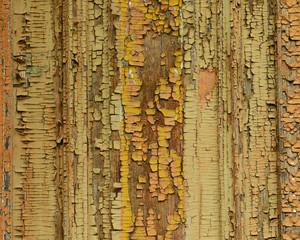Wooden texture close-up