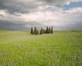 CGI Landscape Tuscany poster