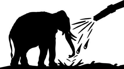 Elephantidae Wash Center - Elefanten Waschstation - 16-9 - g1323