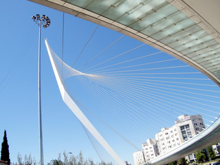 Jerusalem Bridge of Strings 2010