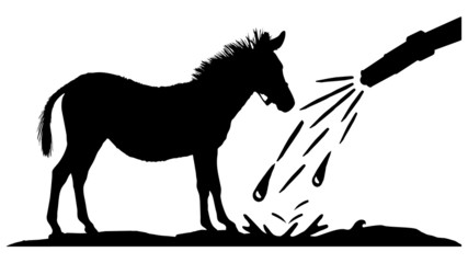 horses wash center - Pferde Waschstation - 16-9 - g1326