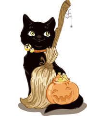 Cat and Broom