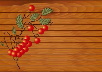 Red rowan branch