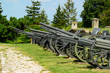 Military canons