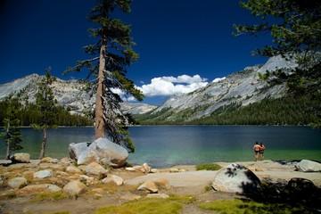 Yosemite Vacation