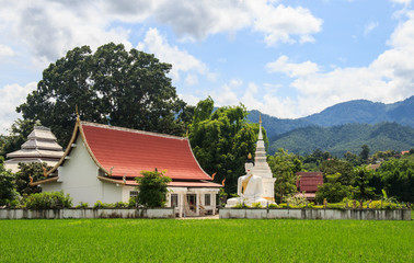 Temple on Rice fields
