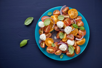 Vegetable salad with mozzarella cheese over dark blue background