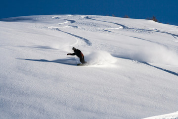 Snowboarder go down on powder snow.