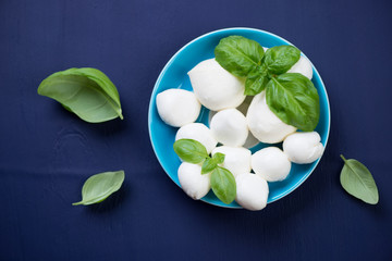 Above view of mozzarella cheese with green basil, studio shot