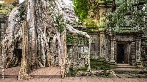 ancient ruins of Ta Prohm - 69149705