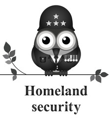 American homeland security