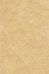 Antique Animal Skin Parchment Grunge Texture Sample